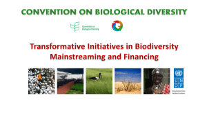 Mainstreaming biodiversity into public policy design