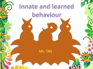 E3 Innate and learned behaviour trs