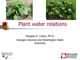 Plant Water Relations 7-2014