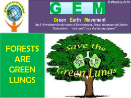 Forests are green lungs - St. Francis Xavier Church , Panvel