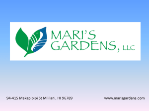 Mari`s Gardens, LLC--Aquaponics Production