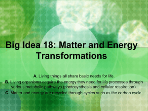 Big Idea 18 : Matter and Energy Transformations