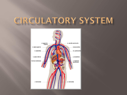 Circulatory System - Madison County Schools