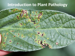 05 Introduction to Plant Pathology
