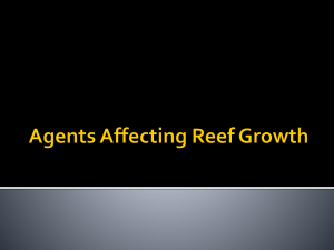 Agents affecting Reefs Growth