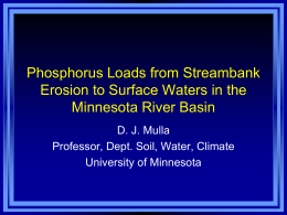 Phosphorus Loads to Surface Waters in the Minnesota River Basin