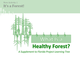 What Is a Forest? - School of Forest Resources & Conservation