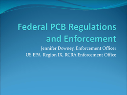 U.S. EPA Staff Perspective on Polychlorinated Biphenyls (PCBs