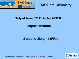 TG_Data_MSFD_Impl_Expert_Workshop_19_June_2014