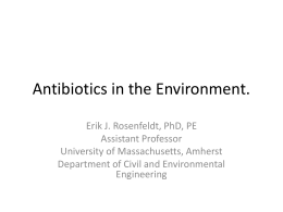 Antibiotics in the Environment. - University of Massachusetts Amherst