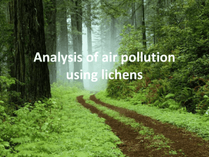 Analysis of air pollution using lichen