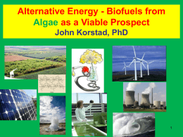 Alternative Energy - Biofuels From Algae as a Viable Prospect