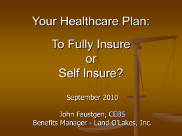 Fully-Insure or Self-Insure