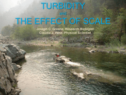 measured scour of Chinook salmon redds on dredge tailings and