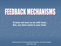 feedback mechanism PowerPoint