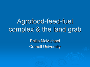 Agrofood-feed-fuel complex and the land grab