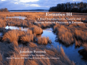 Estuaries 101 - Southeast Watershed Alliance