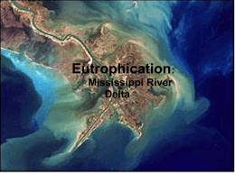 Eutrophication Slideshow