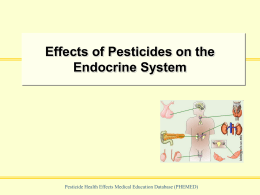 Effects of Pesticides on the Endocrine System