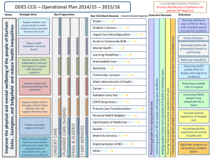 DDES CCG – Plan on a Page 2013/14