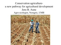 Principles of conservation agriculture