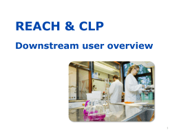 REACH and CLP Downstream user overview - ECHA