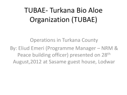 tubae thematic areas