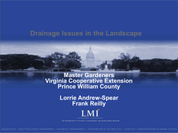 Drainage Issues in the Landscape