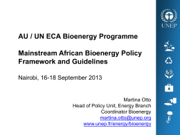 The UN-Energy Bioenergy Decision Support Tool (DST) GBEP 1st