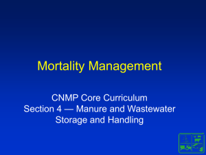Mortality Management - ABE