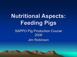 Nutritional Aspects: Feeding Pigs