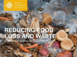 The Future of Food Losses and Our Challenges