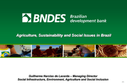 Agriculture, Sustainability and Social Issues in Brazil