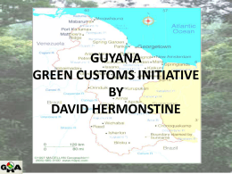 Green Customs Initiative David Hermonstine