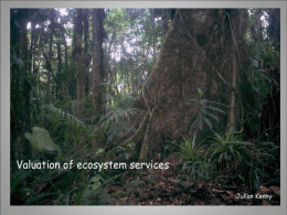 ECOSYSTEM SERVICES SERVICE