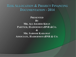 Risk Allocation and Project Financing Documentation