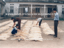 Bamboo Splitting PPT - International Network for Bamboo and Rattan