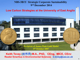 NBS-3B1Y Strategic Corporate Sustainability