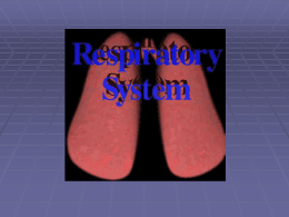 Respiration - nrpsportal.org