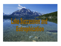 To access Lake Succession Notes  Click Here