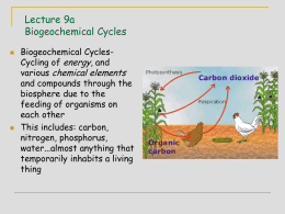 Carbon Cycle - Department of Soil, Water, and Climate