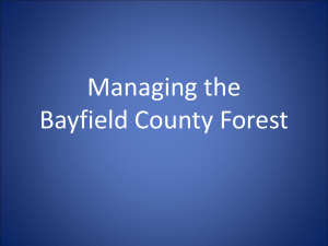 Managing the Bayfield County Forest