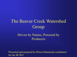 The Beaver Creek Watershed Group (PPT
