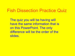 Fish Dissection Quiz