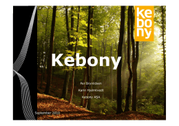 Kebony Technology