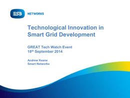 Technological Innovation in Smart Grid Development
