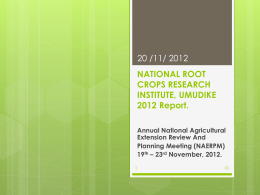 national root crops