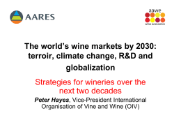 Strategies for wineries over the next two decades