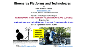 Bioenergy Platforms and Technologies