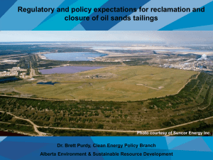 Tailings Roadmap and Action Plan
